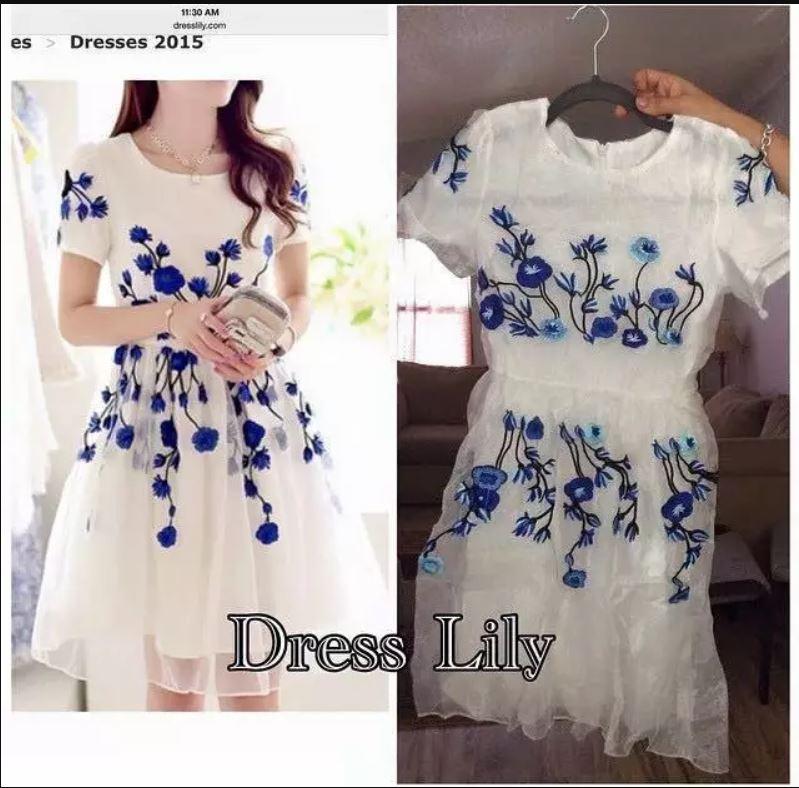 Exemple achat chez Dress Lily